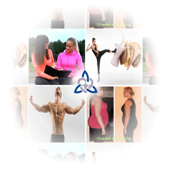5aa0d4aed4-livstilsprogrammet-collage2